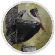 Round Beach Towel featuring the painting Golden Sunrise Pelican by Phyllis Beiser