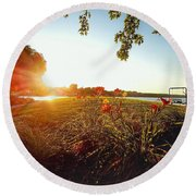 Round Beach Towel featuring the photograph Goldenhour Flowers by Nikki McInnes