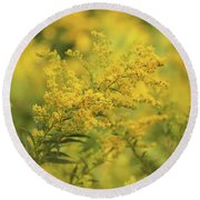 Round Beach Towel featuring the photograph Goldenrod Dream by Rachel Cohen