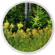 Round Beach Towel featuring the photograph Goldenrod In The Adirondacks by David Patterson