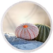 Gone Shelling Round Beach Towel