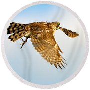 Good Hawk Hunting Round Beach Towel