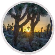 Good Morning From Joshua Tree Round Beach Towel