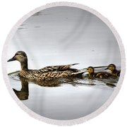 Goose And Goslings Round Beach Towel