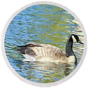 Round Beach Towel featuring the photograph Goose And Sun Reflections by David Lawson