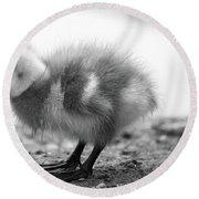 Goose Chick Round Beach Towel