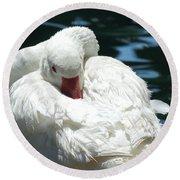 Goose Feather Siesta Round Beach Towel