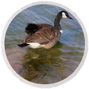 Goose Round Beach Towel by John Lautermilch