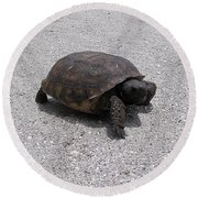 Gopher Tortoise  Round Beach Towel