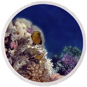 Gorgeous Red Sea Underwater World 3 Round Beach Towel