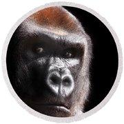 Gorilla ... Kouillou Round Beach Towel by Stephie Butler