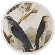 Goshawk And Stanley Hawk Round Beach Towel