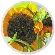 Gospel Flat Sunflowers Round Beach Towel