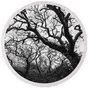Gothic Woods II Round Beach Towel by Marco Oliveira