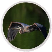 Round Beach Towel featuring the photograph Graceful Flight by Everet Regal