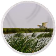Graceful Flight Round Beach Towel