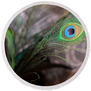Graceful Peacock Feather Round Beach Towel
