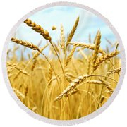 Grain Field Round Beach Towel