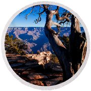 Round Beach Towel featuring the photograph Grand Canyon 27 by Donna Corless