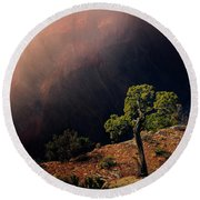 Grand Canyon Juniper Round Beach Towel