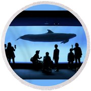 Grand Whale Round Beach Towel