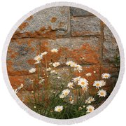 Granite Daisies Round Beach Towel