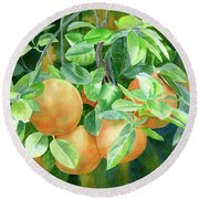 Grapefruit With Background Round Beach Towel