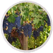 Grapes Are Ready Round Beach Towel by Judy Kirouac