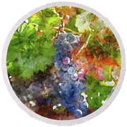 Grapes On The Vine In The Autumn Season Round Beach Towel
