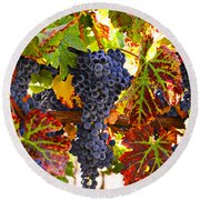 Grapes On Vine In Vineyards Round Beach Towel