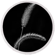 Grass In Black And White Round Beach Towel