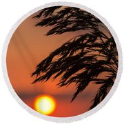 Grass Silhouette Round Beach Towel
