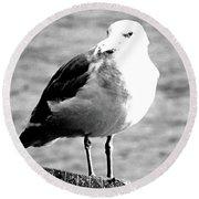 Gray Day Gull Round Beach Towel