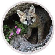 Gray Fox Kit Round Beach Towel