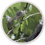 Gray Jays Group Round Beach Towel