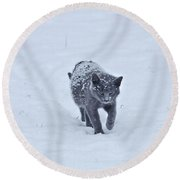 Gray On White Round Beach Towel