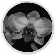 Gray Shades Of Orchids Round Beach Towel