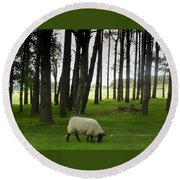 Grazing In The Woods Round Beach Towel
