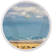 Grazing Near Highwood Round Beach Towel