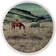 Grazing Solo Round Beach Towel