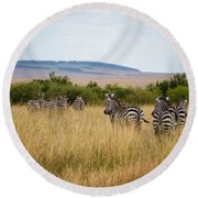 Grazing Zebras Round Beach Towel