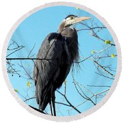 Round Beach Towel featuring the photograph Great Blue Heron 001 by Chris Mercer