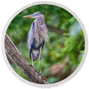 Round Beach Towel featuring the photograph Great Blue Heron 2 by Gary Hall