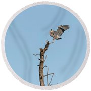 Great Blue Heron 2017-4 Round Beach Towel by Thomas Young