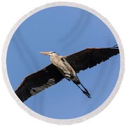 Great Blue Heron 2017-6 Round Beach Towel by Thomas Young
