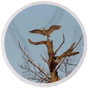 Great Blue Heron 2017-7 Round Beach Towel by Thomas Young
