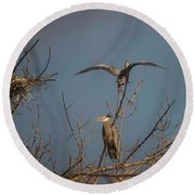 Great Blue Heron - 3 Round Beach Towel by David Bearden