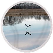 Great Blue Heron At Take-off Round Beach Towel by Jennifer Nelson