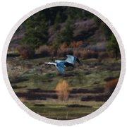 Great Blue Heron In Flight II Round Beach Towel