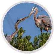 Great Blue Heron Nest Building Round Beach Towel